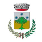 Logo Comune di Nesso